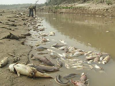 contaminacion en bolivia