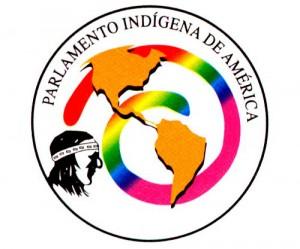 parlamento-indigena-de-america-300x249