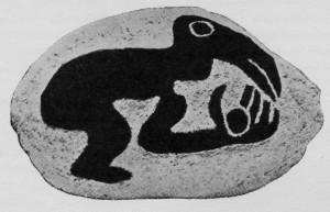 rapa-a1-300x193